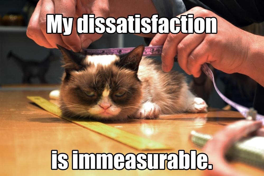 Grumpycat_meme1