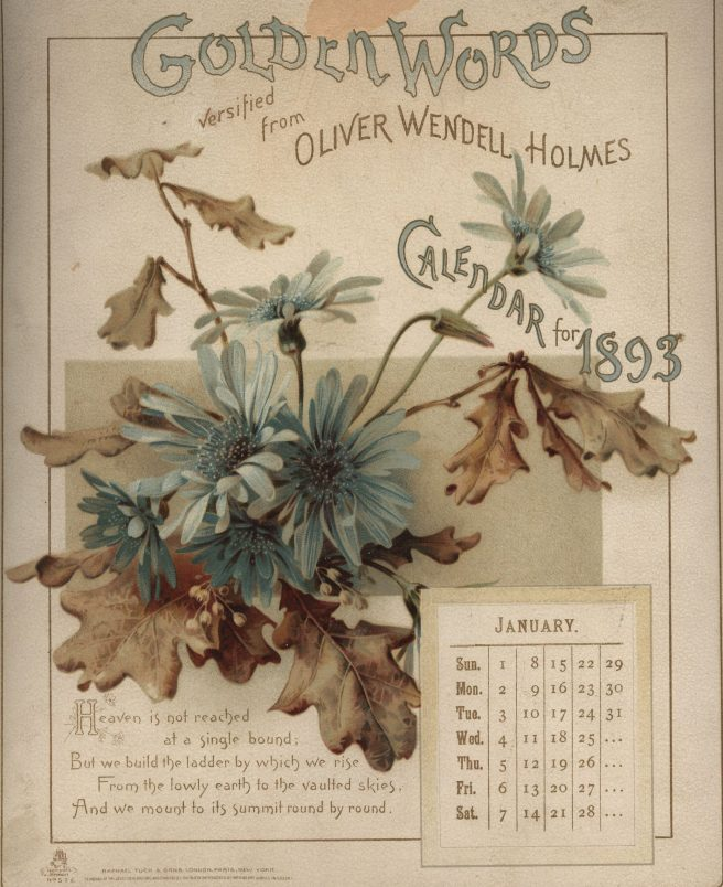 oliver-wendell-holmes-january-blue-flowers