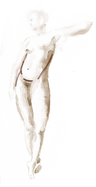 pronounced curvature of abdomen at high hip